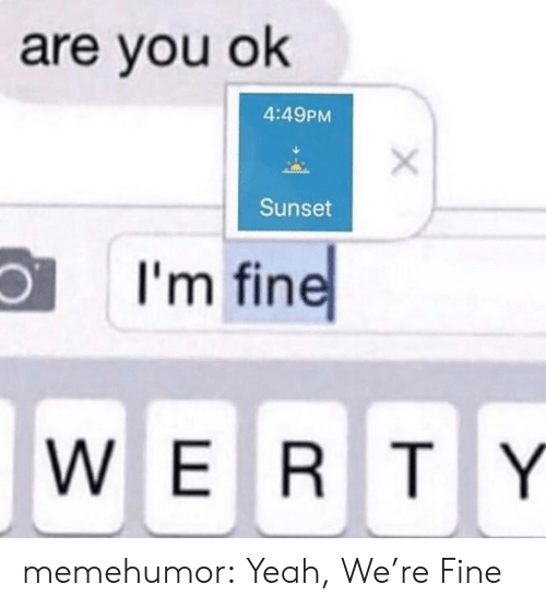 You Ok: are you ok  4:49PM  Sunset  I'm fine  WERTY memehumor:  Yeah, We're Fine