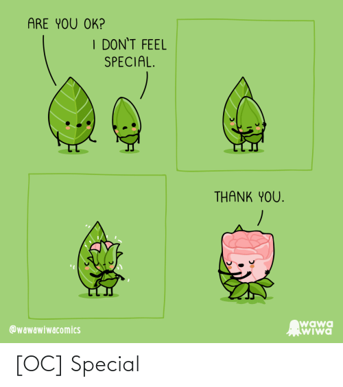 You Ok: ARE YOU OK?  I DON'T FEEL  SPECIAL.  THANK YOU.  wawa  WIwa  @wawawiwacomics [OC] Special