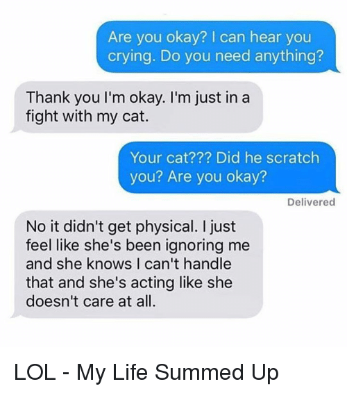 Memes, She Knows, and Scratch: Are you okay? can hear you  crying. Do you need anything?  Thank you l'm okay. I'm just in a  fight with my cat.  Your cat Did he scratch  you? Are you okay?  Delivered  No it didn't get physical. just  feel like she's been ignoring me  and she knows I can't handle  that and she's acting like she  doesn't care at all. LOL - My Life Summed Up