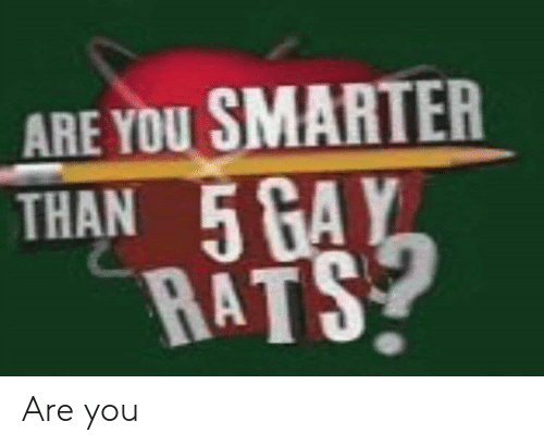rats: ARE YOU SMARTER  THAN 5 GAY  RATS Are you