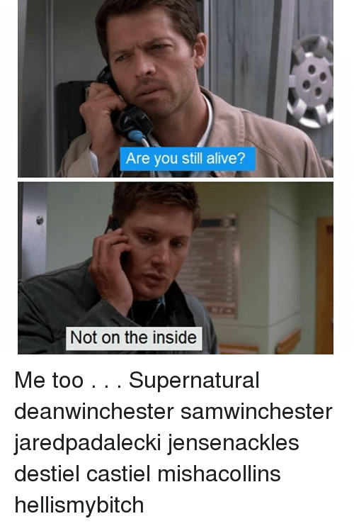 are you still alive not on the inside me too 18551283 are you still alive? not on the inside me too supernatural