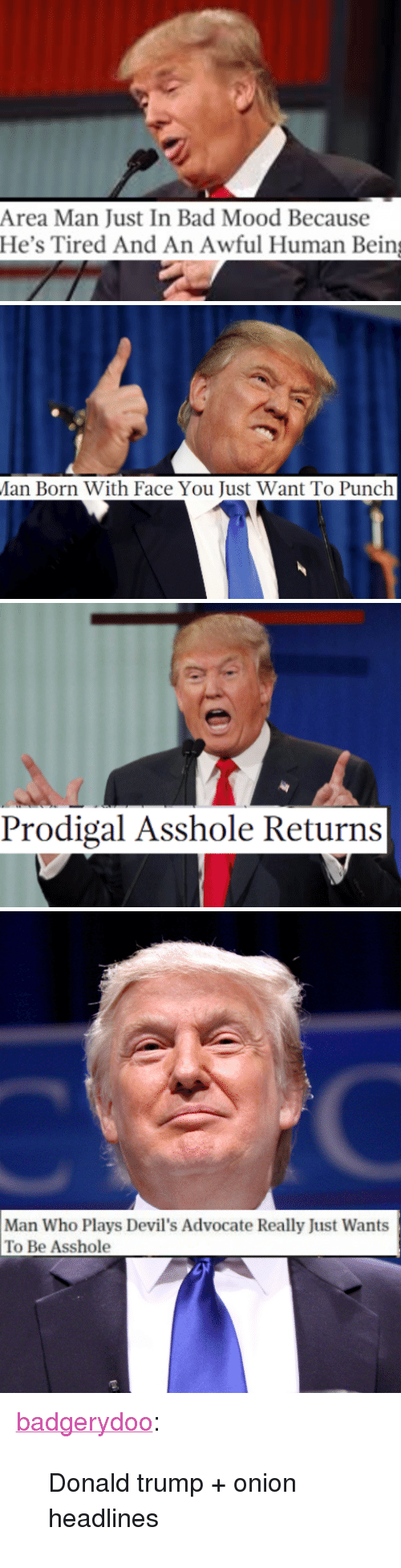 """Donald Trump: Area Man Just In Bad Mood Because  He's Tired And An Awful Human Bein   an Born With Face You Just Want To Punch   Prodigal Asshole Returns   Man Who Plays Devil's Advocate Really Just Wants  To Be Asshole <p><a class=""""tumblr_blog"""" href=""""http://badgerydoo.tumblr.com/post/141055139573"""">badgerydoo</a>:</p> <blockquote> <p>Donald trump + onion headlines</p> </blockquote>"""
