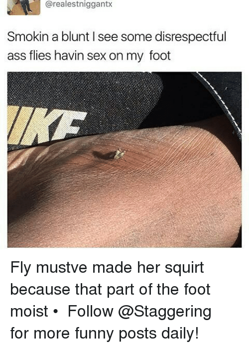 Squirtly: arealestniggantx  Smokin a blunt l see some disrespectful  ass flies havin sex on my foot Fly mustve made her squirt because that part of the foot moist • ➫➫➫ Follow @Staggering for more funny posts daily!