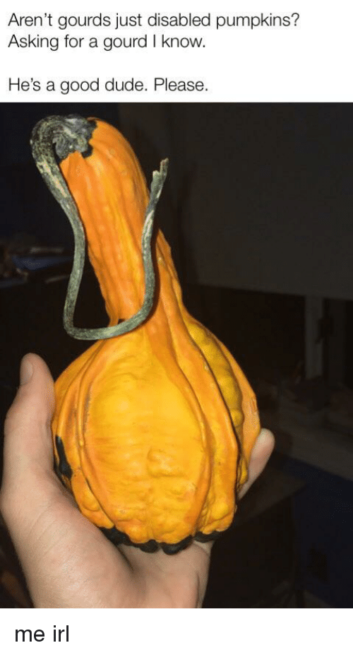 gourds: Aren't gourds just disabled pumpkins?  Asking for a gourd I know.  He's a good dude. Please