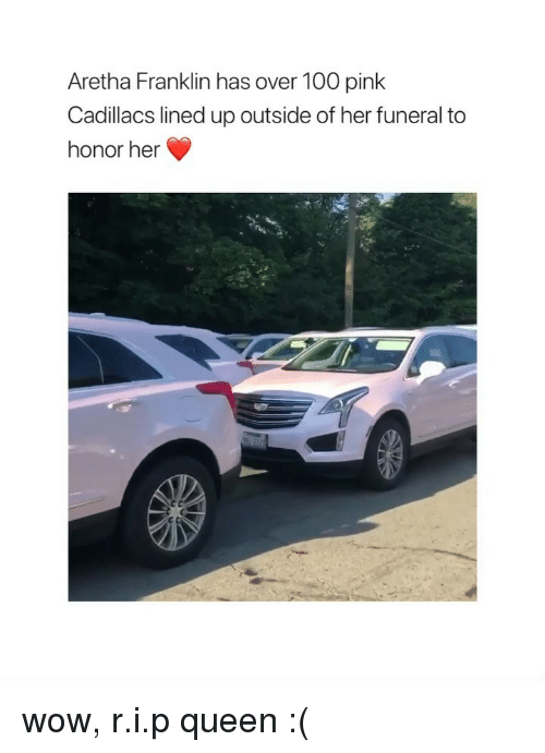 Anaconda, Wow, and Queen: Aretha Franklin has over 100 pink  Cadillacs lined up outside of her funeral to  honor her wow, r.i.p queen :(
