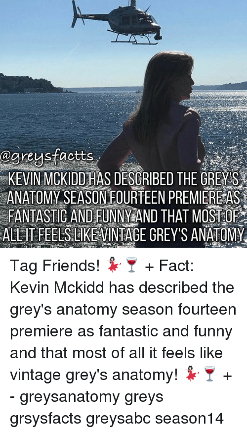 Friends, Funny, and Memes: @areus factts  KEVIN MCKIDD HAS DESCRIBED THE GREY S  ANATOMY SEASONEOURTEEN PREMIER宦AS  FANTASIC AND FUNNYEAND THAT MOSTEO  ALL IT FEELSLIKEVINIAGE GREY'S ANATOMY Tag Friends! 💃🏻🍷 + Fact: Kevin Mckidd has described the grey's anatomy season fourteen premiere as fantastic and funny and that most of all it feels like vintage grey's anatomy! 💃🏻🍷 + - greysanatomy greys grsysfacts greysabc season14
