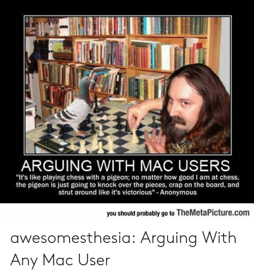 """Victorious: ARGUING WITH MAC USERS  """"It's like playing chess with a pigeon; no matter how good I am at chess  the pigeon is just going to knock over the pieces, crap on the board, and  strut around like it's victorious"""" Anonymous  you should probably go to TheMetaPicture.com awesomesthesia:  Arguing With Any Mac User"""