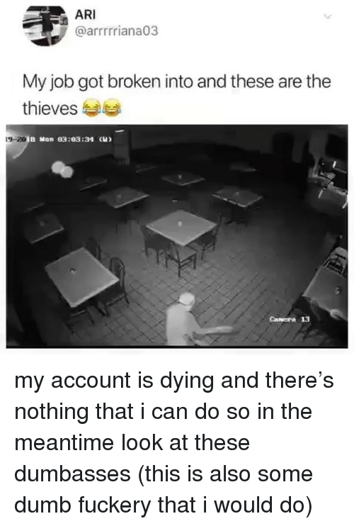 Dumbasses: ARI  @arrrrriana03  My job got broken into and these are the  thieves  9-20  B Mon 03:03:34 (H)  Canora 13 my account is dying and there's nothing that i can do so in the meantime look at these dumbasses (this is also some dumb fuckery that i would do)