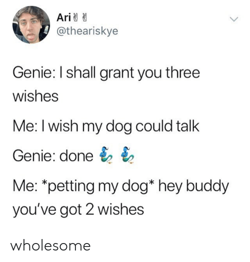 petting: Ari  @theariskye  Genie: I shall grant you three  wishes  Me: I wish my dog could talk  Genie: done  Me: *petting my dog* hey buddy  you've got 2 wishes wholesome
