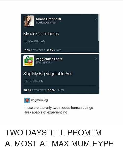 VeggieTales: Ariana Grande  @Ariana Grande  My dick is in flames  1019/14, 8:40 AM  138K  RETWEETS  129K  LIKES  Veggietales Facts  aveggiefact  Slap My Big Vegetable Ass  1/4/16, 3:46 PM  36.3K  RETWEETS  36.3K  LIKES  C wigmissing  these are the only two moods human beings  are capable of experiencing TWO DAYS TILL PROM IM ALMOST AT MAXIMUM HYPE