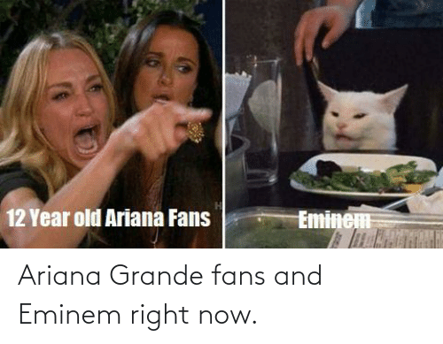 ariana grande: Ariana Grande fans and Eminem right now.