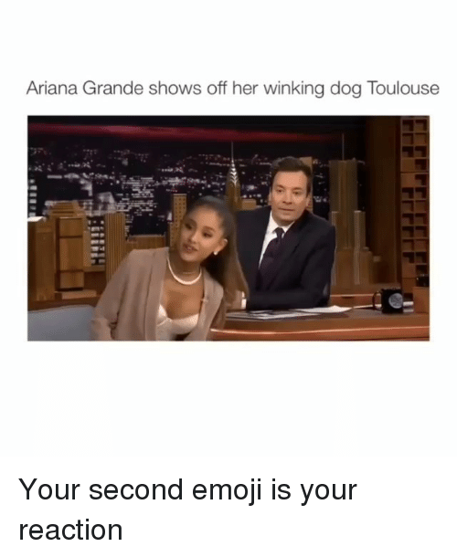 Ariana Grande, Emoji, and Memes: Ariana Grande shows off her winking dog Toulouse Your second emoji is your reaction
