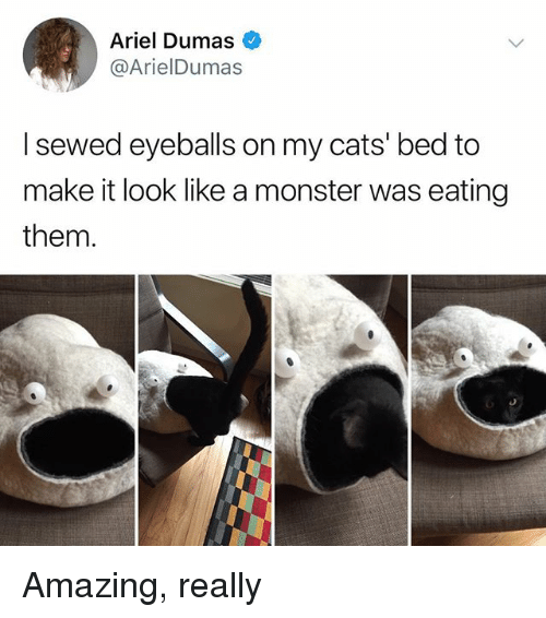 25+ Best Memes About Monster