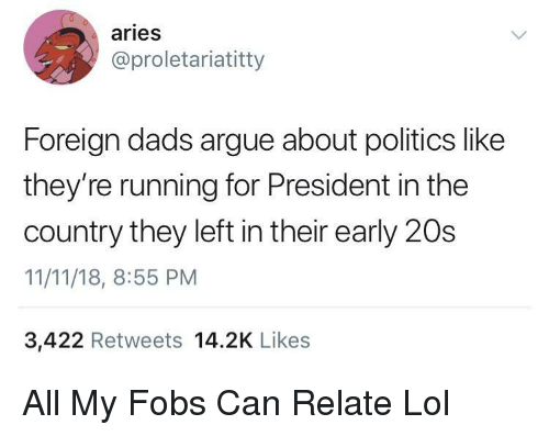 For President: aries  @proletariatitty  Foreign dads argue about politics like  they're running for President in the  country they left in their early 20s  11/11/18, 8:55 PM  3,422 Retweets 14.2K Likes All My Fobs Can Relate Lol