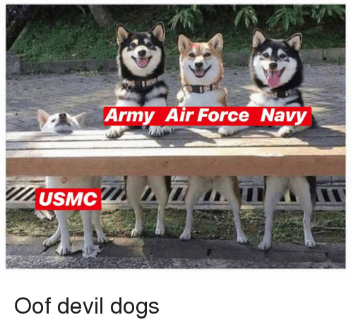 usmc: Army Air Force Navy  USMC Oof devil dogs