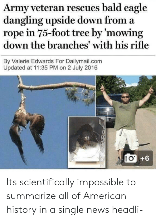 dailymail: Army veteran rescues bald eagle  dangling upside down from a  rope in 75-foot tree by 'mowing  down the branches' with his rifle  By Valerie Edwards For Dailymail.com  Updated at 11:35 PM on 2 July 2016  I O  +6 Its scientifically impossible to summarize all of American history in a single news headli-