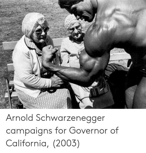 Arnold Schwarzenegger: Arnold Schwarzenegger campaigns for Governor of California, (2003)