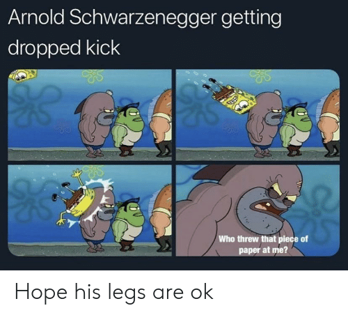 arnold: Arnold Schwarzenegger getting  dropped kick  Who threw that piece of  paper at me? Hope his legs are ok