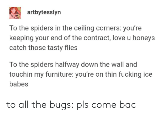 Babes: artbytesslyn  To the spiders in the ceiling corners: you're  keeping your end of the contract, love u honeys  catch those tasty flies  To the spiders halfway down the wall and  touchin my furniture: you're on thin fucking ice  babes to all the bugs: pls come bac