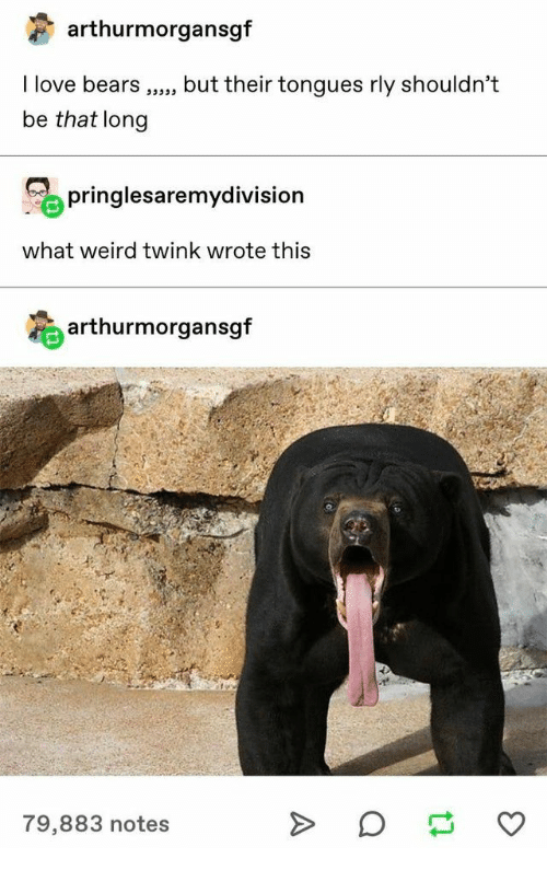 tongues: arthurmorgansgf  I love bears  but their tongues rly shouldn't  be that long  pringlesaremydivision  what weird twink wrote this  arthurmorgansgf  79,883 notes