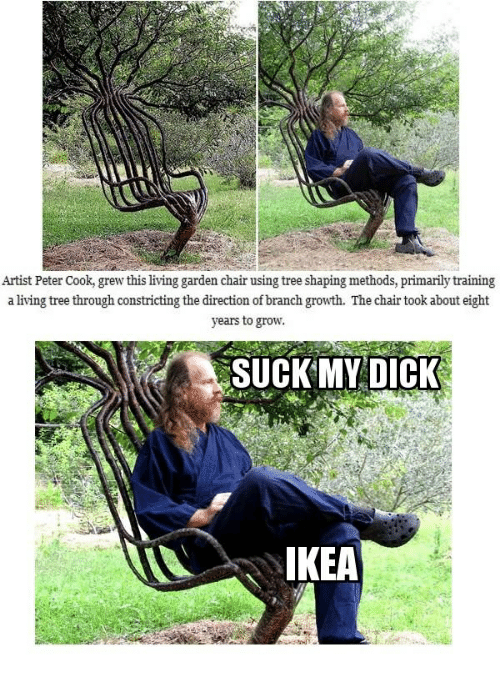 Suck My Dick, Dick, and Tree: Artist Peter Cook, grew this living garden chair using tree shaping methods, primarily training  a living tree through constricting the direction of branch growth. The chair took about eight  years to grow  SUCK MY DICK  KEA