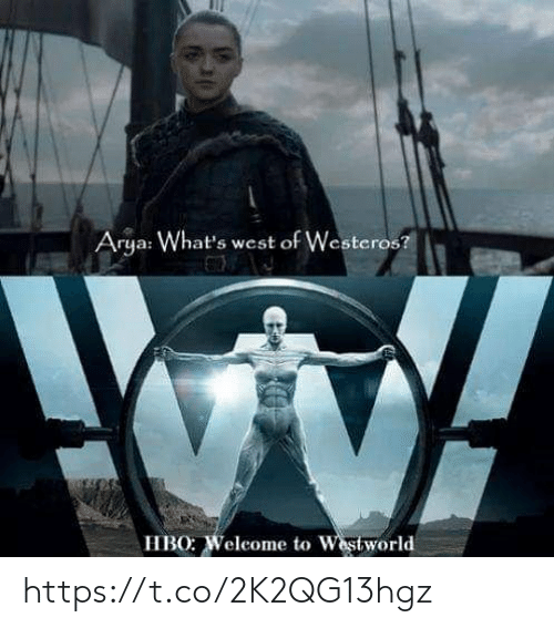Westworld: Arya: What's west of Westeros?  HBO: Weleome to Westworld https://t.co/2K2QG13hgz