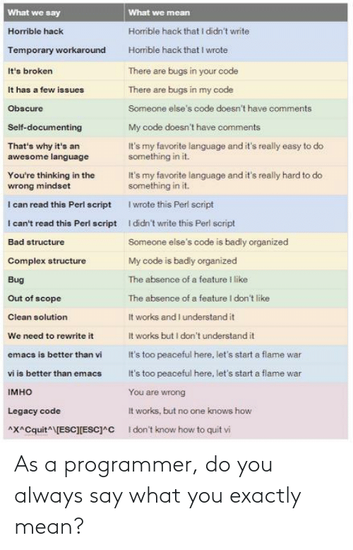 programmer: As a programmer, do you always say what you exactly mean?
