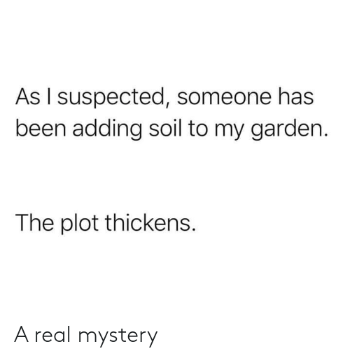 soil: As I suspected, someone has  been adding soil to my garden.  The plot thickens. A real mystery