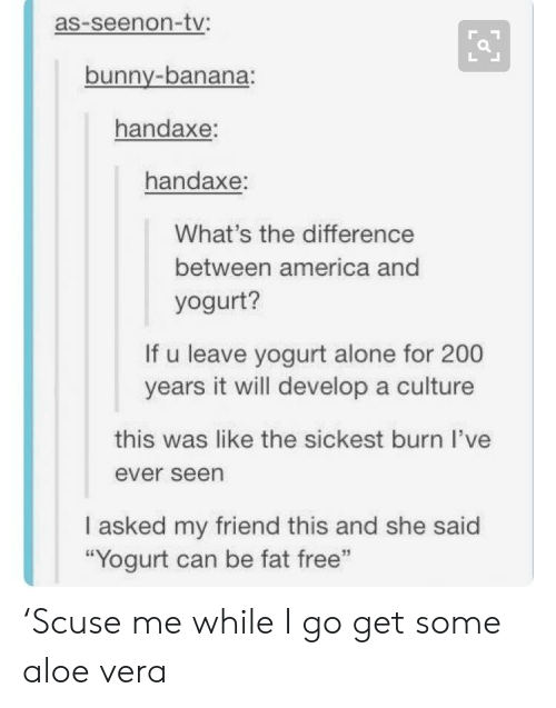 """Vera: as-seenon-tv:  bunny-banana:  handaxe:  handaxe:  What's the difference  between america and  yogurt?  If u leave yogurt alone for 200  years it will develop a culture  this was like the sickest burn I've  ever seen  I asked my friend this and she said  """"Yogurt can be fat free""""  95 'Scuse me while I go get some aloe vera"""