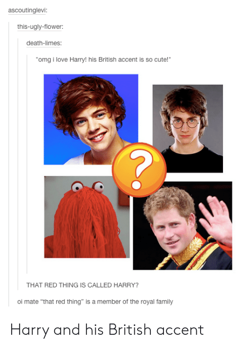 """limes: ascoutinglevi:  this-ugly-flower:  death-limes:  omg i love Harry!his British accent is so cute!""""  THAT RED THING IS CALLED HARRY?  oi mate """"that red thing"""" is a member of the royal family Harry and his British accent"""