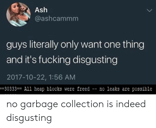 leaks: Ash  @ashcammm  guys literally only want one thing  and it's fucking disgusting  2017-10-22, 1:56 AM  -30333 All heap blocks were freed - no leaks are possible no garbage collection is indeed disgusting