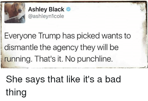punchlines: Ashley Black  @ashleynlcole  Everyone Trump has picked wants to  dismantle the agency they will be  running. That's it. No punchline. She says that like it's a bad thing