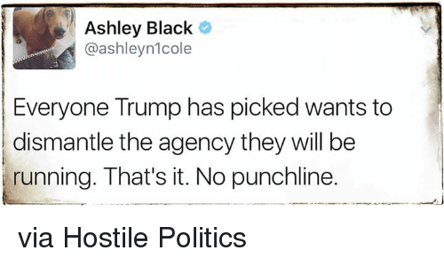 punchlines: Ashley Black  @ashleynlcole  Everyone Trump has picked wants to  dismantle the agency they will be  running. That's it. No punchline. via Hostile Politics