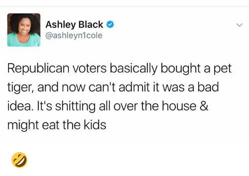 Bad, Memes, and Black: Ashley Black C  @ashleyn1cole  Republican voters basically bought a pet  tiger, and now can't admit it was a bad  idea. It's shitting all over the house &  might eat the kids 🤣