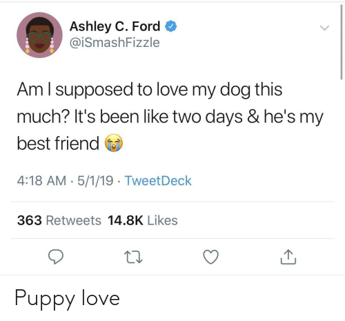 Ford: Ashley C. Ford  @iSmashFizzle  Am l supposed to love my dog this  much? It's been like two days & he's my  best friend  4:18 AM-5/1/19 TweetDeck  363 Retweets 14.8K Likes Puppy love