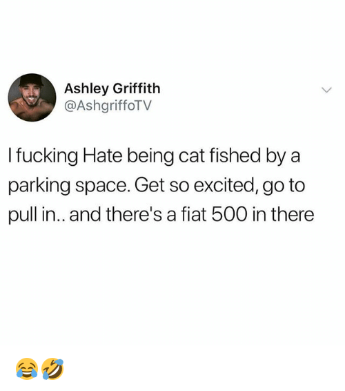Fiat: Ashley Griffith  @AshgriffoTV  I fucking Hate being cat fished by a  parking space. Get so excited, go to  pull in.. and there's a fiat 500 in there 😂🤣