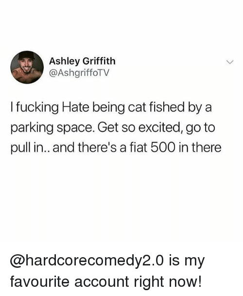 Fiat: Ashley Griffith  @AshgriffoTV  I fucking Hate being cat fished by a  parking space. Get so excited, go to  pull in.. and there's a fiat 500 in there @hardcorecomedy2.0 is my favourite account right now!