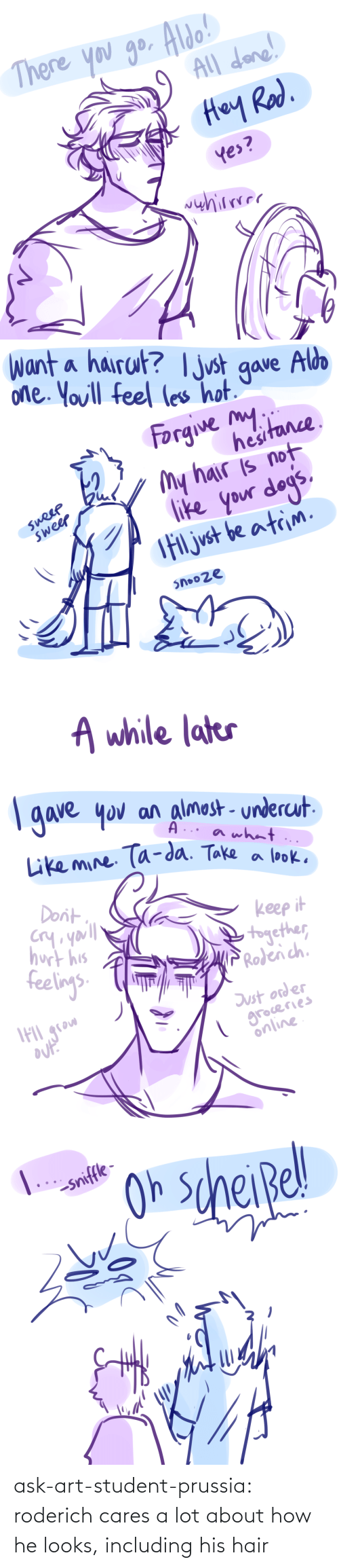 A Lot: ask-art-student-prussia:  roderich cares a lot about how he looks, including his hair