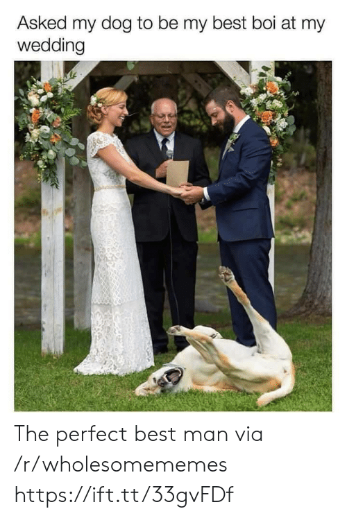 best man: Asked my dog to be my best boi at my  wedding The perfect best man via /r/wholesomememes https://ift.tt/33gvFDf