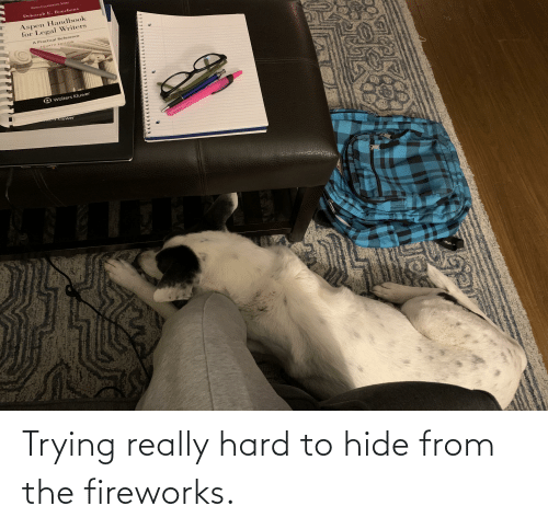 Deborah: ASPEN COURSEBOOK SERIES  Deborah E, Bouchoux  Aspen Handbook  for Legal Writers  A Practical Reference  FOURTH EDITION  O Wolters Kluwer  ECTS Kluwer Trying really hard to hide from the fireworks.