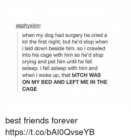 Caged: asphyxion:  when my dog had surgery he cried a  lot the first night, but he'd stop when  i laid down beside him, so i crawled  into his cage with him so he'd stop  crying and pet him until he fell  asleep. i fell asleep with him and  when i woke up, that bITCH WAS  ON MY BED AND LEFT ME IN THE  CAGE best friends forever https://t.co/bAI0QvseYB