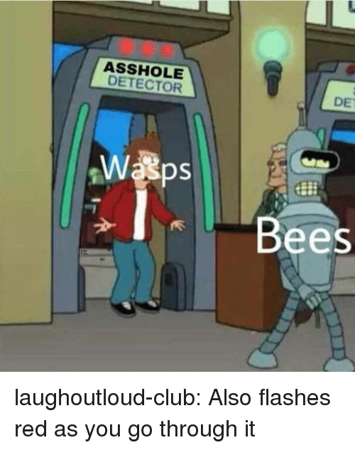 flashes: ASSHOLE  DETECTOR  DE  Bees laughoutloud-club:  Also flashes red as you go through it