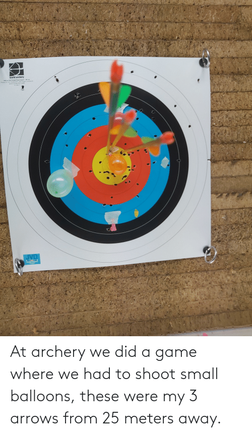 archery: At archery we did a game where we had to shoot small balloons, these were my 3 arrows from 25 meters away.