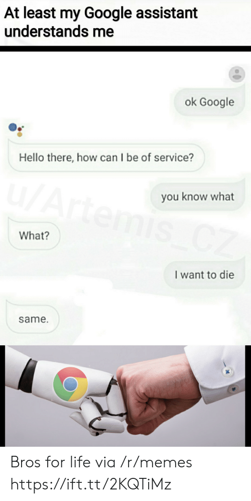 i want to die: At least my Google assistant  understands me  ok Google  Hello there, how can I be of service?  u/Artemis CZ  you know what  What?  I want to die  same. Bros for life via /r/memes https://ift.tt/2KQTiMz