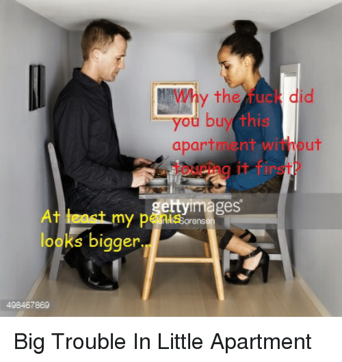 Find Me An Apartment: Search Dani Memes On Me.me