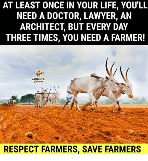 Architect: AT LEAST ONCE IN YOUR LIFE, YOU'LL  NEED A DOCTOR, LAWYER, AN  ARCHITECT, BUT EVERY DAY  THREE TIMES, YOU NEED A FARMER!  LAUGHING  Tu  RESPECT FARMERS, SAVE FARMERS