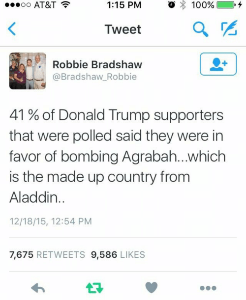 Agrabah: AT&T  1:15 PM  。 : 100%) 0.4  Iweet  Robbie Bradshaw  @Bradshaw_Robbie  41 % of Donald Trump supporters  that were polled said they were in  favor of bombing Agrabah...which  is the made up country from  Aladdin  12/18/15, 12:54 PM  7,675 RETWEETS 9,586 LIKES
