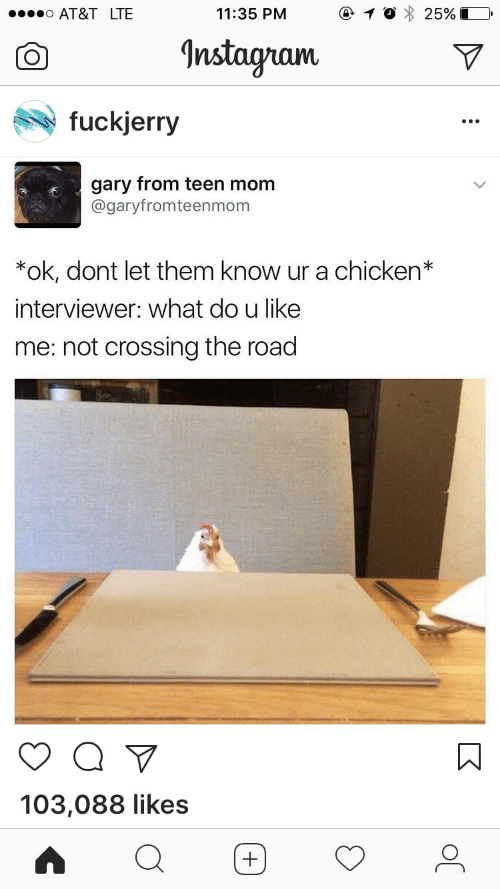Fuckjerry: AT&T LTE  11:35 PM  25%  Instagram  fuckjerry  gary from teen mom  @garyfromteenmom  *ok, dont let them know ur a chicken*  interviewer: what do u like  me: not crossing the road  103,088 likes  +