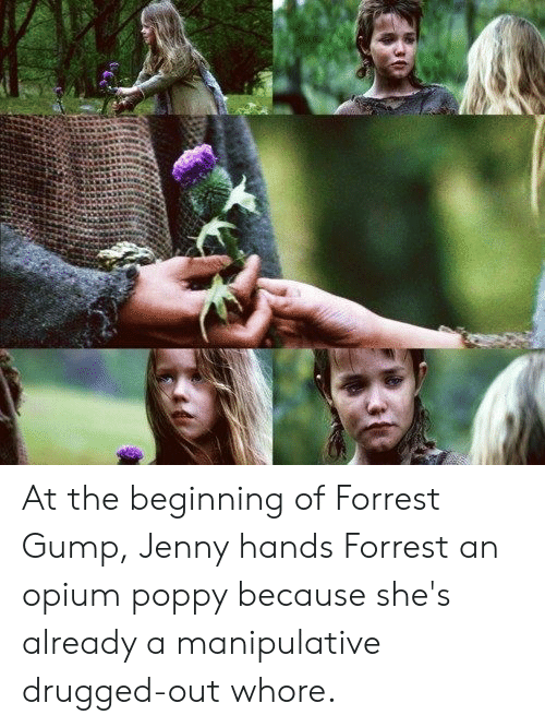 Forrest Gump Jenny: At the beginning of Forrest Gump, Jenny hands Forrest an opium poppy because she's already a manipulative drugged-out whore.