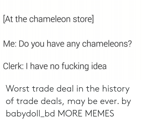 Worst Trade Deal In The History Of Trade Deals: At the chameleon store]  Me: Do you have any chameleons?  Clerk: I have no fucking idea Worst trade deal in the history of trade deals, may be ever. by babydoll_bd MORE MEMES